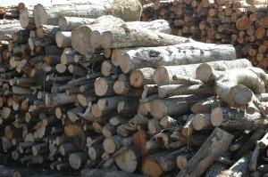 seasoned firewood Devon