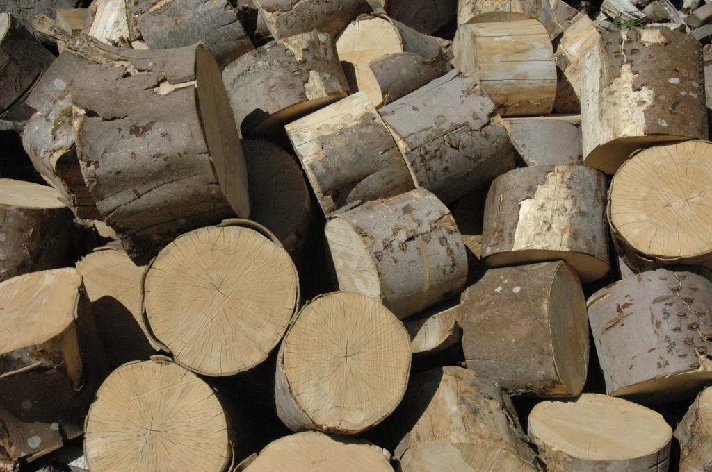 Logs for sale Devon