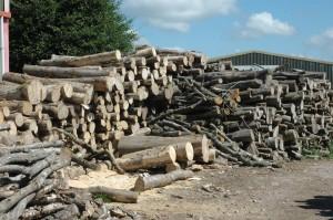 Dry logs Devon